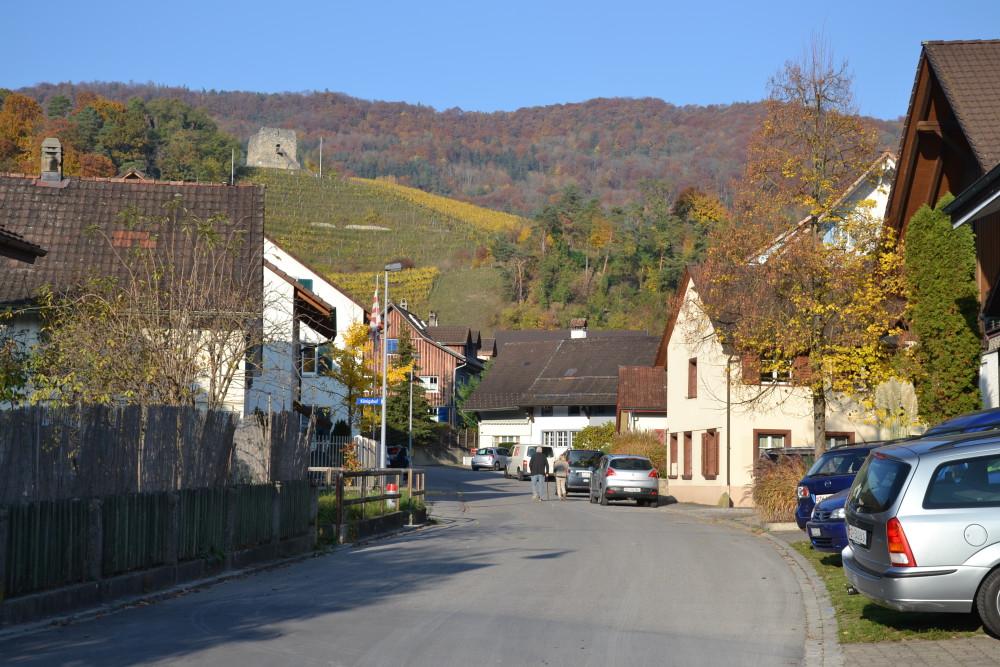 ZUFAHRT (Dorfstrasse)